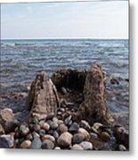 Water Stump Metal Print