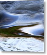 Water Swallow Metal Print