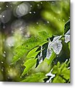 Water-the Essence Of Life V3 Metal Print