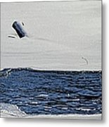 Water Trail Metal Print