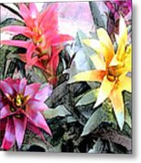 Watercolor And Ink Sketch Of Colorful Bromeliads Metal Print