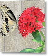 Watercolor Butterfly Two Metal Print