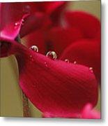 Waterflower Drops Metal Print