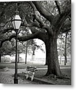 Waterfront Park Metal Print