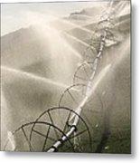 Watering Fields Metal Print