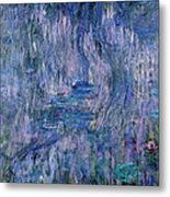 Waterlilies And Reflections Of A Willow Tree Metal Print