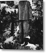 Waterman's Statue Metal Print