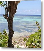Waters Edge Metal Print