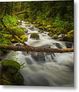 Waters Of Larch Mountain Metal Print by Stuart Deacon