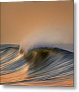 Wave And Bird  Mg_6854dn Metal Print
