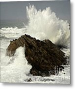 Wave At Shore Acres Metal Print