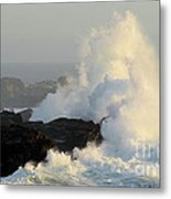 Waves At Salt Point Metal Print