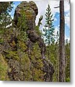 Waving Rock At Yellowstone Metal Print