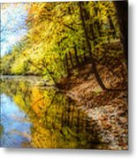Waxen Autumn 3  Metal Print