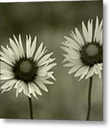 We Are Two Of A Kind Metal Print