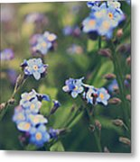 We Lay With The Flowers Metal Print