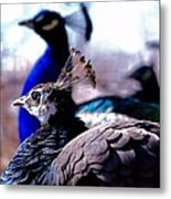 We Protect Our Love Metal Print