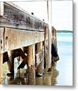 Weathered But Strong Metal Print