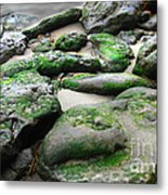 Weathered By Tides Metal Print