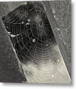 Web Metal Print