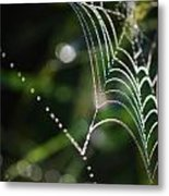 Web In The Morning Metal Print