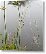 Web Of Pearls Metal Print
