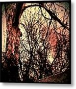 Web Of Tree Mauve Metal Print