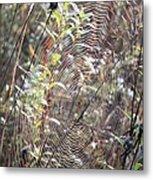 Web We Weave Metal Print