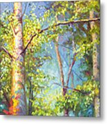 Welcome Home - Birch And Aspen Trees Metal Print
