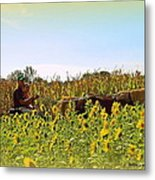 Welcome To Gorman Farm In Evandale Ohio Metal Print