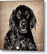 Well You Did Ask For My Best Portrait Smile Metal Print
