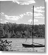Wellesley College Waban Lake Metal Print by University Icons