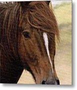 Welsh Pony Painting Metal Print