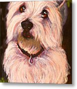 West Highland Terrier Reporting For Duty Metal Print by Susan A Becker