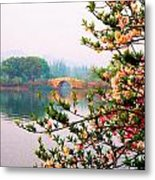 West Lake Blossums Metal Print