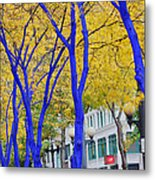 West Lake Park Metal Print by Donald Torgerson