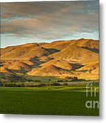 West Side Of Squaw Butte Metal Print