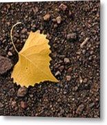 West Texas Autumn Metal Print