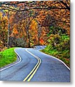 West Virginia Curves 2 Metal Print