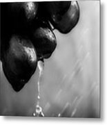Wet Grapes Metal Print