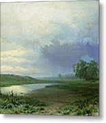 Wet Meadow Metal Print