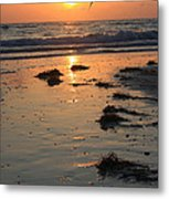 Wet Sunset Metal Print
