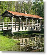 Wetland Footbridge Metal Print