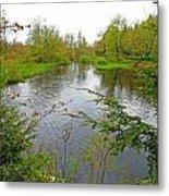 Wetland Greens Metal Print