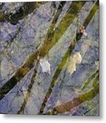 Wetland Reflections Metal Print