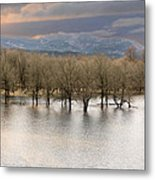 Wetlands At Columbia River Gorge Metal Print