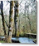 Wetlands In March Metal Print