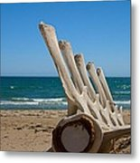 Whale Bones On The Beach Metal Print by Robert Bascelli