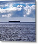 Whale Watch 5 Metal Print