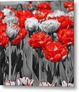 Just A Little Color Please Metal Print